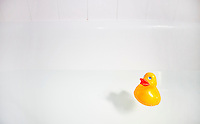 Rubber duck in bathtub