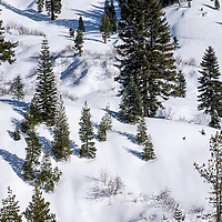 Snowshoeing is a great winter activity in the park.