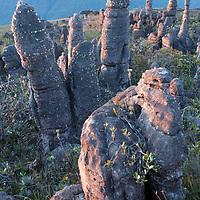 Sunset on rock formations, Amuri Tepui, Venezuela. Canaima National Park, Venezuela.