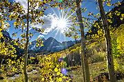 Sunburst through aspen in Maroon Bells Wilderness. Hike Maroon-Snowmass Trail #1975 from Maroon Lake to Buckskin Pass (11 miles round trip gaining 3000 feet) in Maroon Bells-Snowmass Wilderness of White River National Forest, near Aspen, Colorado, USA. The Maroon Bells are two adjacent peaks of the Elk Mountains: Maroon Peak 14,163 feet on left, seen behind North Maroon Peak 14,019 feet. The mountains are on the border between Pitkin County and Gunnison County.