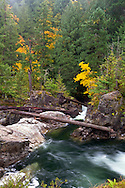 Fall colours and the Little Qualicum River in Little Qualicum Falls Provincial Park on Vancouver Island, British Columbia, Canada