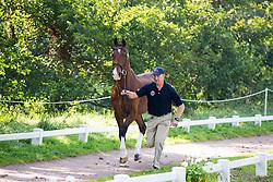 Misdee Wrigley Miller, (USA), Agusstos Armoei, Beau, Carlos, Clemens, Saco - Horse Inspection Driving - Alltech FEI World Equestrian Games™ 2014 - Normandy, France.<br /> © Hippo Foto Team - Leanjo de Koster<br /> 25/06/14