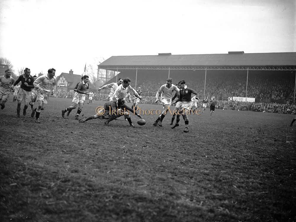 Irish Rugby Football Union, Ireland v England, Five Nations, Landsdowne Road, Dublin, Ireland, Saturday 14th February, 1953,.14.2.1953, 2.14.1953,..Referee- MR A W C Austin, Scottish Rugby Union, ..Score- Ireland 9 - 9 England, ..Irish Team,..R J Gregg, Wearing number 15 Irish jersey, Full Back, Queens University Rugby Football Club, Belfast, Northern Ireland,..M F Lane,  Wearing number 14 Irish jersey, Right wing, University college Cork Football Club, Cork, Ireland,  ..N J Henderson, Wearing number 13 Irish jersey, Right centre, N.I.F.C, Rugby Football Club, Belfast, Northern Ireland,..K Quinn, Wearing number 12 Irish jersey, Left Centre, Old Belvedere Rugby Football Club, Dublin, Ireland,  ..M Mortell, Wearing number 11 Irish jersey, Left wing, Bective Rangers Rugby Football Club, Dublin, Ireland,.  .J W Kyle, Wearing number 10 Irish jersey, Stand Off, Captain of the Irish team, N.I.F.C, Rugby Football Club, Belfast, Northern Ireland,..J A O'Meara, Wearing number 9 Irish jersey, Scrum, University college Cork Football Club, Cork, Ireland,  ..W A O'Neill, Wearing number 1 Irish jersey, Forward, University College Dublin Rugby Football Club, Dublin, Ireland, ..R Roe, Wearing number 2 Irish jersey, Forward, Dublin University Rugby Football Club, Dublin, Ireland,..F E Anderson, Wearing number 3 Irish jersey, Forward, Queens University Rugby Football Club, Belfast, Northern Ireland,..T E Reid, Wearing number 4 Irish jersey, Forward, Garryowen Rugby Football Club, Limerick, Ireland, ..J R Brady, Wearing number 5 Irish jersey, Forward, C I Y M S Rugby Football Club, Belfast, Northern Ireland, . . J S McCarthy, Wearing number 6 Irish jersey, Forward, Dolphin Rugby Football Club, Cork, Ireland, ..R Kavanagh, Wearing number 7 Irish jersey, Forward, University College Dublin Rugby Football Club, Dublin, Ireland,..W E Bell, Wearing number 8 Irish jersey, Forward, Collegians Rugby Football Club, Belfast, Northern Ireland,.  .Engish Team,..N M Hall, Wearing number 1 Engish jer