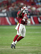 Arizona Cardinals rookie safety Harold Jones-Quartey (41) points in the air as he celebrates after intercepting a third quarter pass during the 2015 NFL preseason football game against the San Diego Chargers on Saturday, Aug. 22, 2015 in Glendale, Ariz. The Chargers won the game 22-19. (©Paul Anthony Spinelli)