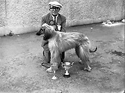 19/07/1952<br /> 07/19/1952<br /> 19 July 1952<br /> Dog show: All Breed Championship, 10th Annual Show of the Combined Canine Clubs at Terenure College,<br /> Templeogue Road Terenure Dublin.