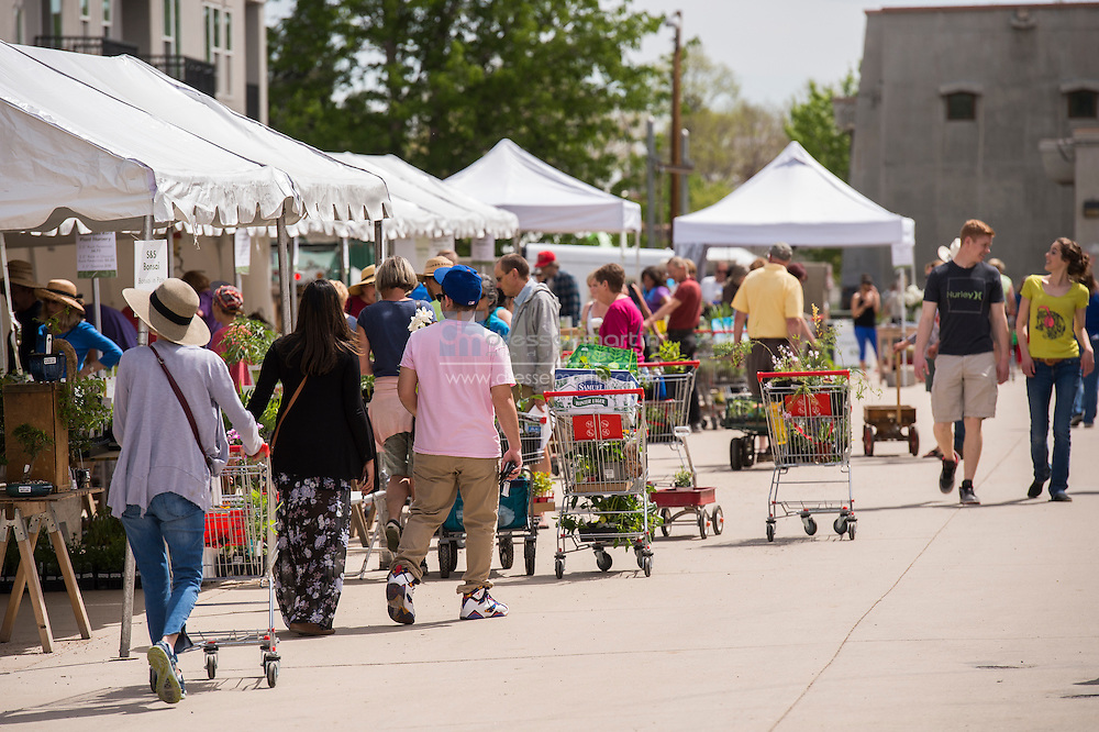 shopping cart plant sale