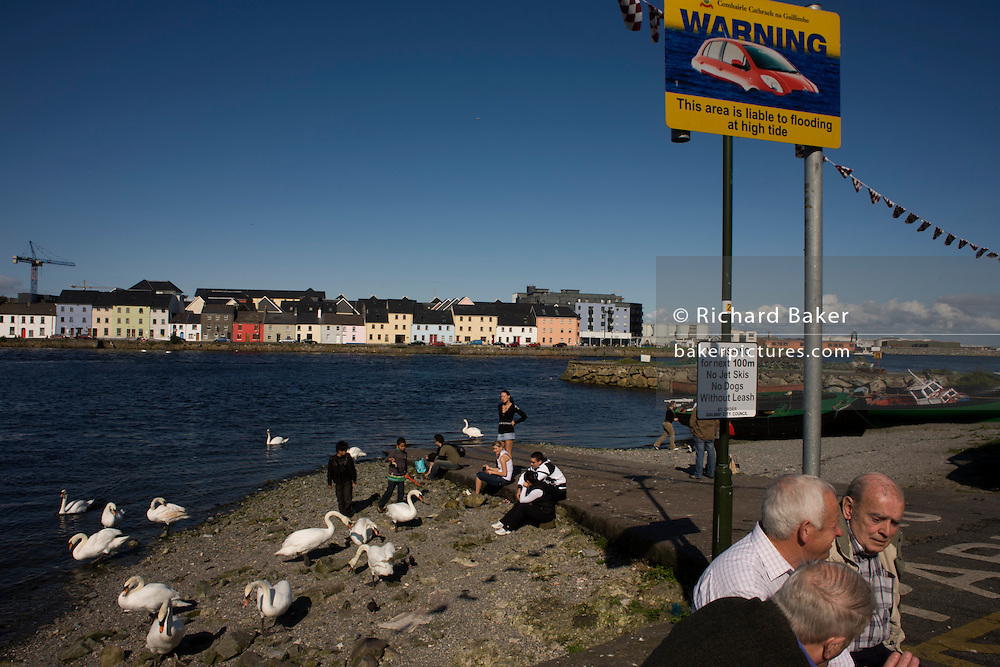 Swans and Irish locals on the Claddagh, an area close to the centre of Galway city, where the Corrib River meets Galway Bay.