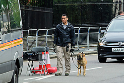 © London News Pictures. 22/04/2016. London, UK. A security dog on patrol in the secure area. Heightened security surrounding the residence of the US Ambassador to the United Kingdom in Regents Park, London, where the President of the United States Barak Obama is staying during his visit to the UK. Photo credit: Ben Cawthra/LNP