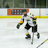 1st year defence man Shaelyn Vallotton (10) of the Regina Cougars in action during the Women's Hockey home game on October 14 at Co-operators arena. Credit: Arthur Ward/Arthur Images