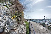 Santa Maria di Leuca, marzo 2013.Pontile e pedane in legno costruite sulla roccia del mare della Marina di Leuca. Il percorso permette di accedere a al porto turistico, a spiaggette e altri punti della costa.