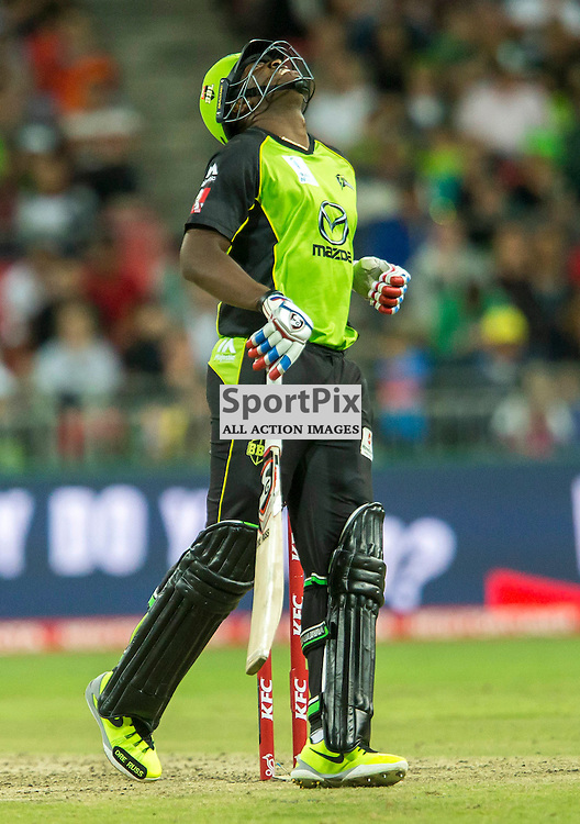 KFC Big Bash League T20 2015-16 , Sydney Thunder v Perth Scorchers, Spotless Stadium; 7 January 2016<br /> Sydney Thunder Andre Russell looks to the heavens after almost being bowled.