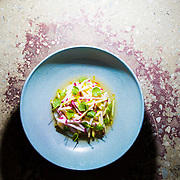 Cured Scallop, green apple, turnip, lemon verbena from Norman in Greenpoint, Brooklyn, New York on April 2, 2017. John Taggart for The New York Times.