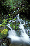 Waterfall after Summer Storm<br /> Along Power Creek, Cordova, Alaska, USA