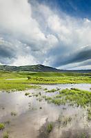 Lamar River Valley, Yellowstone National Park Wyoming