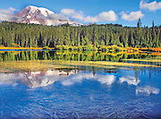 Mt. Rainier reflecting in Reflection Lake in the autumn in Mt. Rainier National Park, Washington State, USA