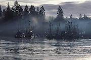 Harbor with fishing fleet in Quadra Island, near Campbell River, British Columbia, Canada