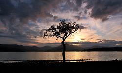 Pictured: Milarrochy Bay during sunset. Loch Lomond.