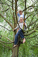 Two boys (9-11) sitting in tree
