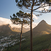 View of Table Mountain and Lion's Head from Signal Hill in Cape Town, South Africa.