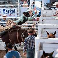 2016 Vale Rodeo