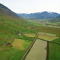 Æsustaðir  séð til suðurs, Eyjafjarðarsveit áður Saurbæjarhreppur / Aesustadir viewing south, Eyjafjardarsveit former Saurbaejarhreppur.