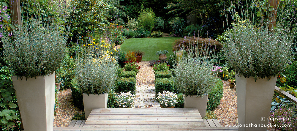General view of the garden. Raised decking area with tall ceramic containers of lavender - Lavandula dentata. Gravel area and lawn beyond. Design: Anthony Goff