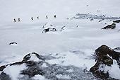 Antarctica- Landscapes