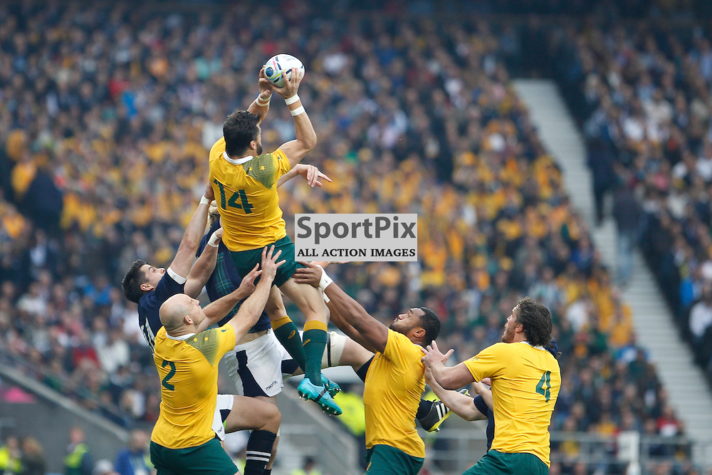 TWICKENHAM, ENGLAND - OCTOBER 18:  Line out won by Ashley-Cooper of Australia during the 2015 Rugby World Cup quarter final between Scotland and Australia at Twickenham Stadium on October 18, 2015 in London, England. (Credit: SAM TODD | SportPix.org.uk)