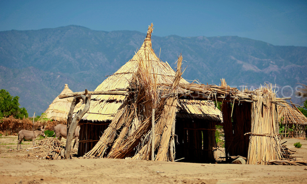 Traditional house of the Arbore tribe, these manmade huts are made from wood and dried grasses..Weyto Valley, South Ethiopia, 2010.