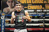 2018-05-22_Leo Santa Cruz Workout