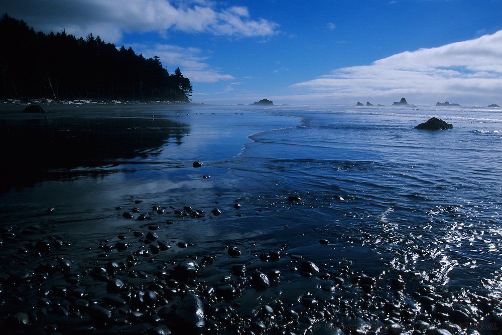 Ruby Beach at low tide; Olympic National Park, Washington