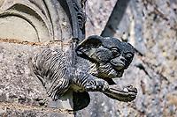 Gizmo<br />La chapelle de Bethl&eacute;em est une chapelle vou&eacute;e au culte catholique romain, situ&eacute;e &agrave; St Jean de Boiseau, en Loire-Atlantique.<br /> Le monument est construit au XVe&nbsp;si&egrave;cle, mais c&lsquo;est sa r&eacute;novation en 1995 qui le fait passer &agrave; la post&eacute;rit&eacute;.  Restaur&eacute;e par le sculpteur Jean-Louis Boistel,qui reprend  les codes de la&nbsp;mythologie, du&nbsp;christianisme et de l'&eacute;poque contemporaine, la chapelle se pare de sculptures pour le moins surprenantes :  gremlins, aliens et m&ecirc;me Goldorak.<br /> L&rsquo;origine sacr&eacute;e du lieu vient de la pr&eacute;sence d&lsquo;une source, aupr&egrave;s de laquelle, initialement, le&nbsp;druidisme&nbsp;cr&eacute;e une c&eacute;r&eacute;monie &agrave;&nbsp;Beltane, afin de c&eacute;l&eacute;brer la f&eacute;condit&eacute;. <br /> Les chim&egrave;res sont les suivantes&nbsp;:<br /> - pinacle&nbsp;nord-ouest, dit de l&lsquo;&acirc;me &laquo;&nbsp;l&lsquo;Homme&nbsp;&raquo;:<br /> &bull;un&nbsp;sanglier&nbsp;(traque du spirituel)<br /> &bull;un&nbsp;centaure&nbsp;(conflits entre instinct et raison)<br /> &bull;Sainte Anne&nbsp;a l&lsquo;ancre (fermet&eacute;, solidit&eacute;, tranquillit&eacute;, fid&eacute;lit&eacute;)<br /> &bull;Adam&nbsp;<br /> - l&rsquo;archivolte, pr&eacute;sentant l&rsquo;arbre de vie<br /> - pinacle&nbsp;ouest, dit de l&lsquo;&acirc;me &laquo;&nbsp;la Femme&nbsp;&raquo;:<br /> &bull;&Egrave;ve<br /> &bull;une&nbsp;triade&nbsp;(Alma,&nbsp;Dahud&nbsp;et&nbsp;Malgwen)<br /> &bull;une&nbsp;sir&egrave;ne&nbsp;(luxure)<br /> &bull;un&nbsp;serpent&nbsp;(le fantasme et le myst&egrave;re)&nbsp;<br /> - pinacle&nbsp;sud-ouest, dit de l&lsquo;inconscient<br /> &bull;Goldorak&nbsp;(droiture, chevalier des temps modernes)<br /> &bull;un&nbsp;Gremlin&nbsp;(mauvais monstre de l&lsquo;homme)<br /> &bull;Gizmo&nbsp;(bon monstre qu&lsquo;est l&lsquo;homme)<br /> &bull;l&lsquo;ironie&nbsp;(arrogance de l&lsquo;homme)&nbsp;<br /> - 