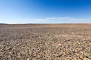 Israel, Negev Desert landscape mount Zin