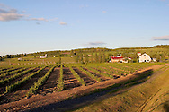 The Orpailleur winery in Knowlton and the Eastern Townships of Quebec, Canada
