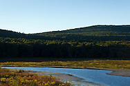 Mamakating, New York  - Early fall scenes from at the Bashakill Wildlife Area on the afternoon of Sept. 23, 2013.