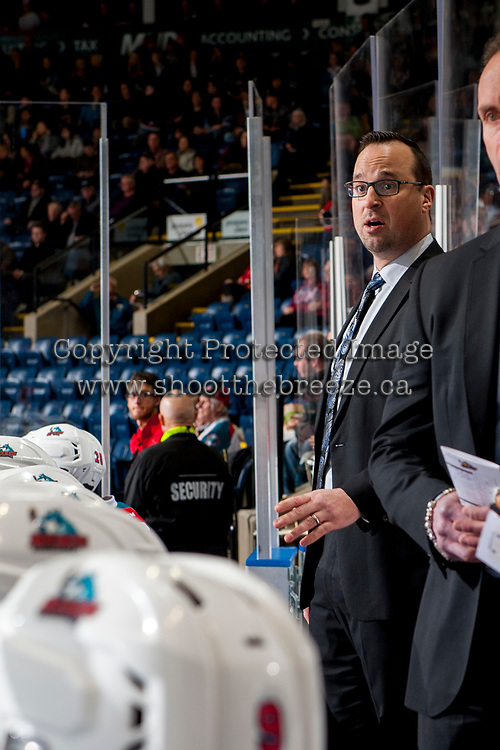 KELOWNA, CANADA - JANUARY 30: Kelowna Rockets' assistant coach Kris Mallette stands on the bench against the Medicine Hat Tigers on January 30, 2017 at Prospera Place in Kelowna, British Columbia, Canada.  (Photo by Marissa Baecker/Shoot the Breeze)  *** Local Caption ***