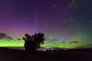 For most of the night the northern lights glowed brightly to the north. But it was just a green band that didn't show much movement. Then at 2AM the sky exploded into color, with purple pillars reaching all the way up to the zenith. I've seen the northern lights dozens of times, but this was only the 3rd time I've seen them reach that high. Unfortunately 2AM is when I decided to change locations so I missed out on the best part of the show.