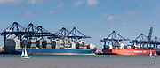Foreign container ships including German ship Hamburg Sud at Port of Felixstowe handling 42% of British containerised trade under pre Brexit free trade agreement rules