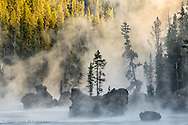 Boulders and trees in steaming Yellowstone River at sunrise, Yellowstone National Park, Wyoming/Montana.