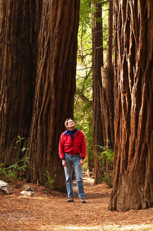 Hiker on the Pfeiffer Falls trail, Pfeiffer Big Sur State Park, Big Sur, California