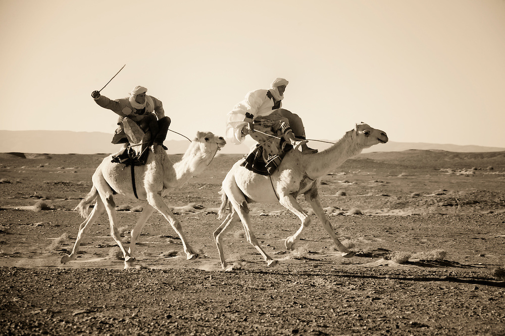 Nomads with dromedaries in the Sahara desert, M'hamid, Morocco.
