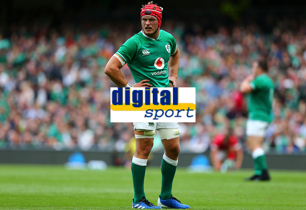 Rugby Union - 2019 pre-Rugby World Cup warm-up (Guinness Summer Series) - Ireland vs. Wales<br /> <br /> Josh van der Flier (Ireland) at The Aviva Stadium.<br /> <br /> COLORSPORT/KEN SUTTON