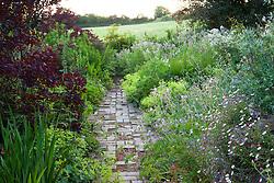 Path in the brick garden at Glebe Cottage with Geranium pratense, Alchemilla mollis and cotinus