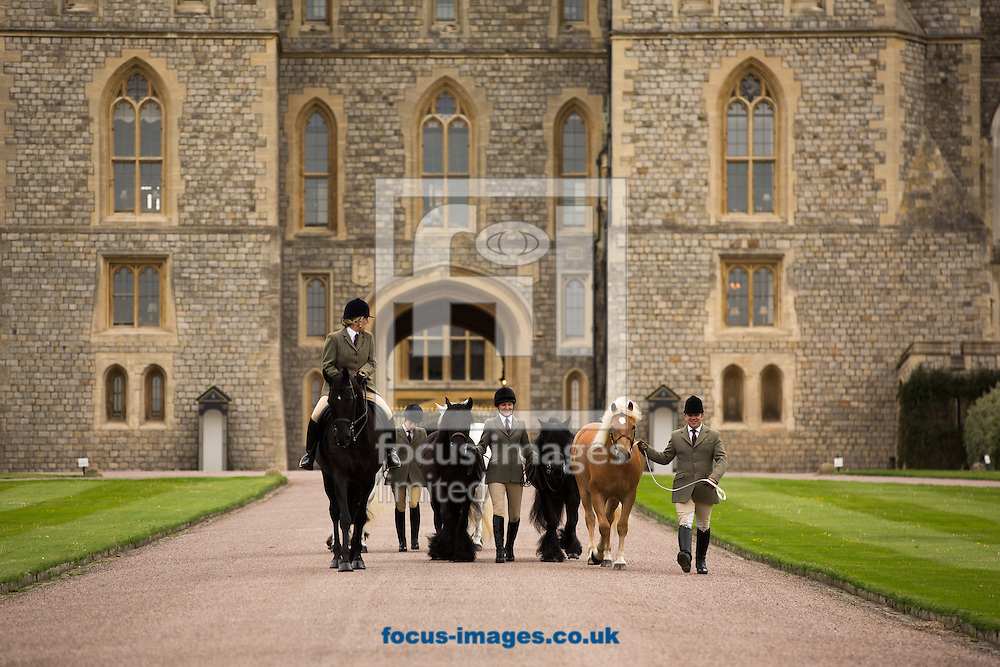 The Queen&rsquo;s horses, of all shapes and sizes, on parade to welcome over 50,000 visitors to the Royal Windsor Horse Show, running  13-17/5/15. Her Majesty The Queen, who has attended the show every year since it began in 1943, has several entries including her home bred Highlands and her former racehorse, Barber&rsquo;s Shop.<br /> <br /> <br /> Picture by Mark Chappell/Focus Images Ltd +44 77927 63340<br /> 12/05/2015