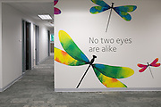 Colorful wall art adorns CooperVision's new offices in Victor on Thursday, August 27, 2015.