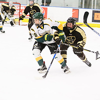 1st year forward Jordan Kulbida (18) of the Regina Cougars in action during the Women's Hockey home game on January 27 at Co-operators arena. Credit: Arthur Ward/Arthur Images