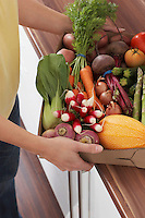 Woman holding container full of fresh vegetables mid section close-up
