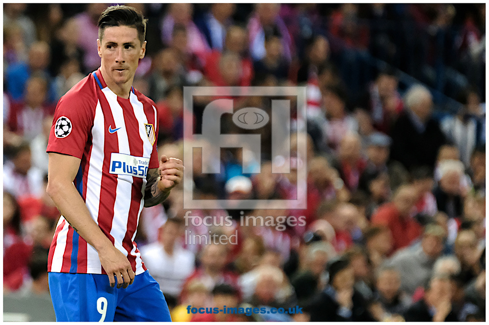 Fernando Torres of Atletico Madrid during the second leg of the UEFA Champions League semi-final at Vicente Calderon Stadium, Madrid<br /> Picture by Kristian Kane/Focus Images Ltd +44 7814 482222<br /> 10/05/2017