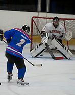 Coventry Panthers V London dragons