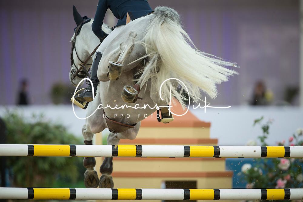 Offel Katharina (UKR) - Charlie<br /> CHI Al Shaqab - Doha 2013<br /> © Dirk Caremans